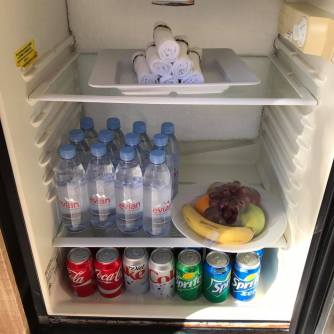 Our fridge was well stoked with chilled towels, bottled water, Coke, Diet Coke, Sprite, and a lovely plate of fruit.